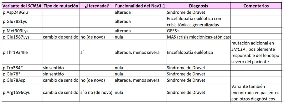 Variantes SCN1A