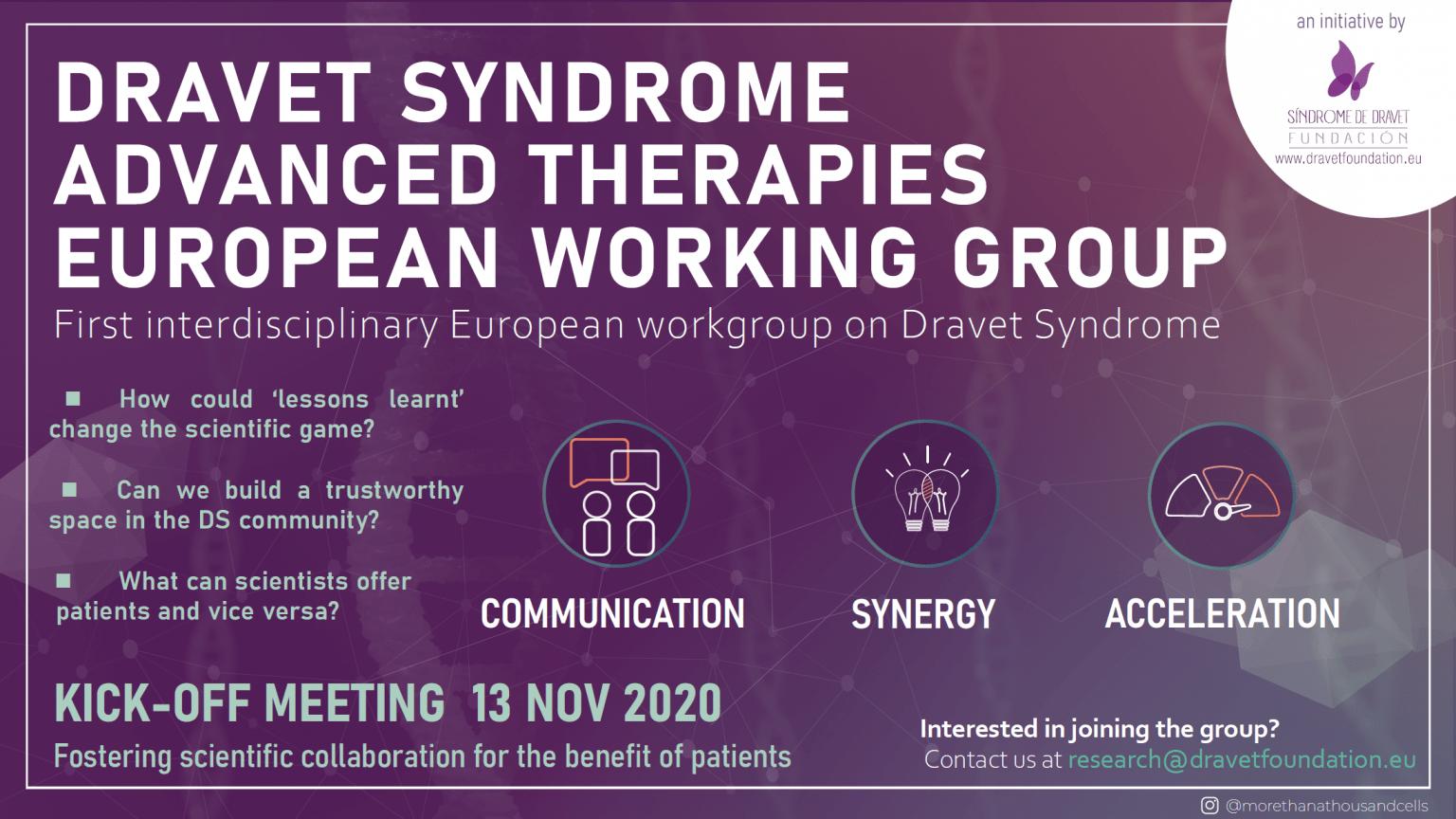 Dravet Syndrome Advanced Therapies European Working Group
