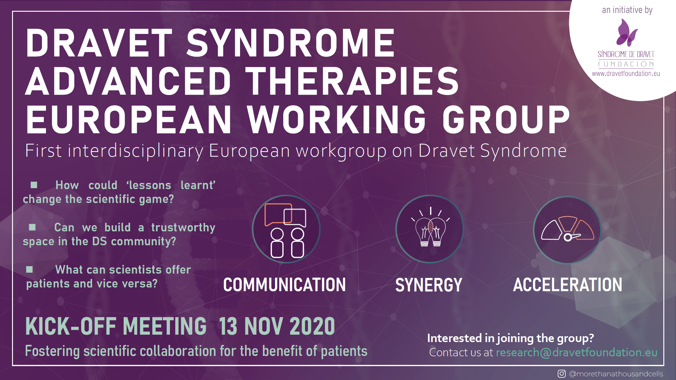 Dravet Syndrome Advanced Therapies European Working Group
