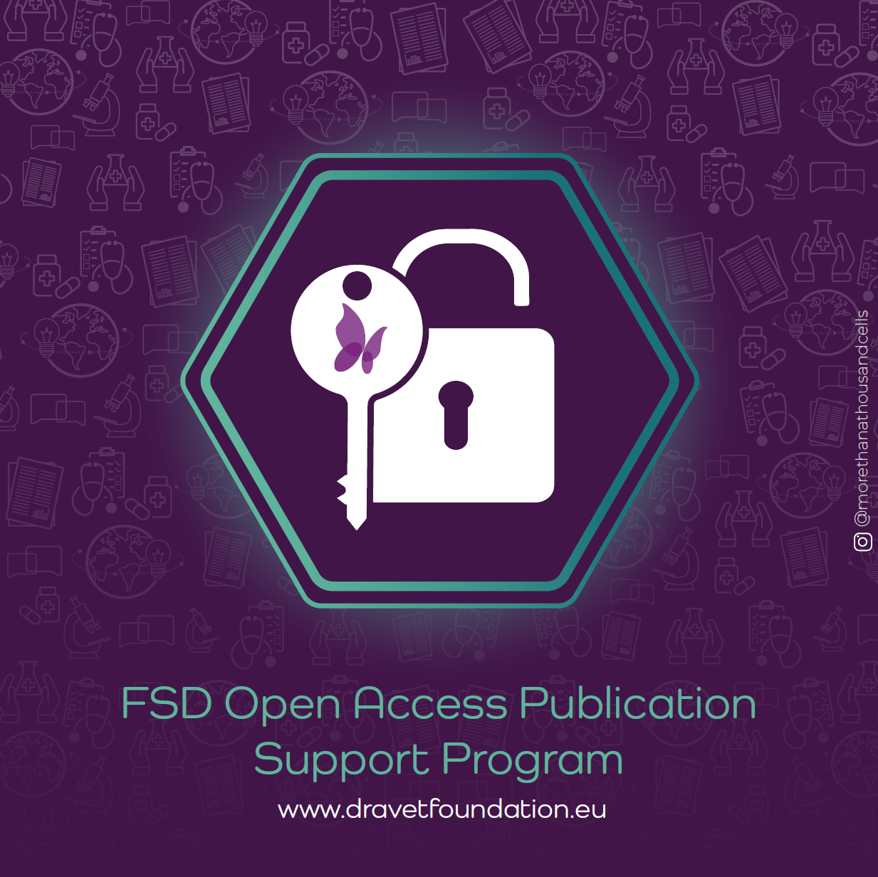 FSD Open-Access Publication Support Program