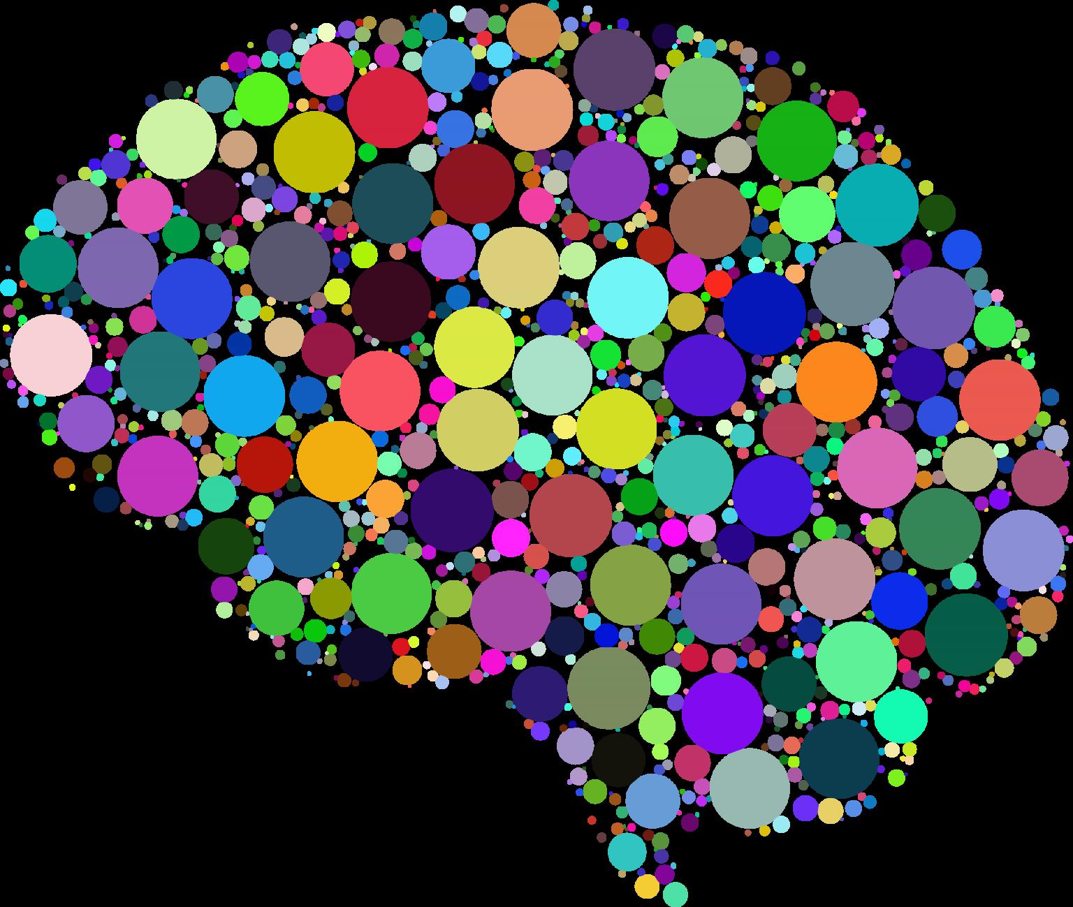 Cerebro proteoma