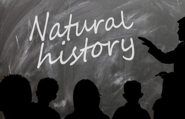 Natural history